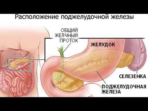 Лечебное питание при панкреатите. Продукты, в которые влюблена Поджелудочная Железа!