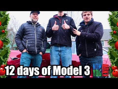 Model 3 Seating for Tall People - 12 days of Model 3!