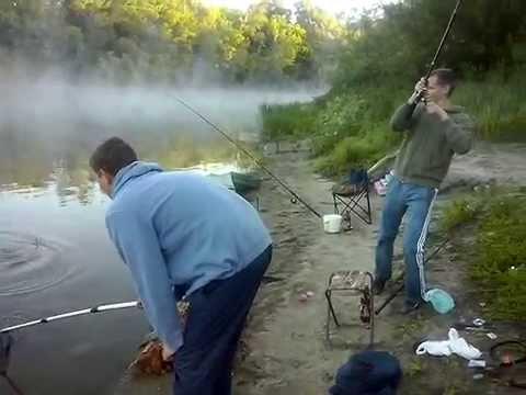 ловля фидером на сейме