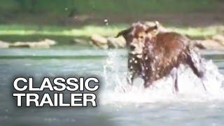 Fluke Official Trailer #1 - Samuel L. Jackson Movie (1995) HD