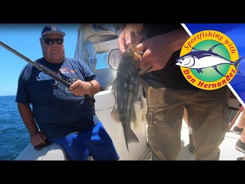 Bass Fishing With Dan Hernandez In Long Beach, CA - Calico Bass, Sand Bass