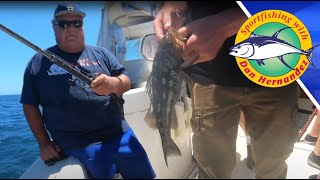 Bass Fishing with Dan Hernandez in Long Beach, CA - Calico Bass, Sand Bass