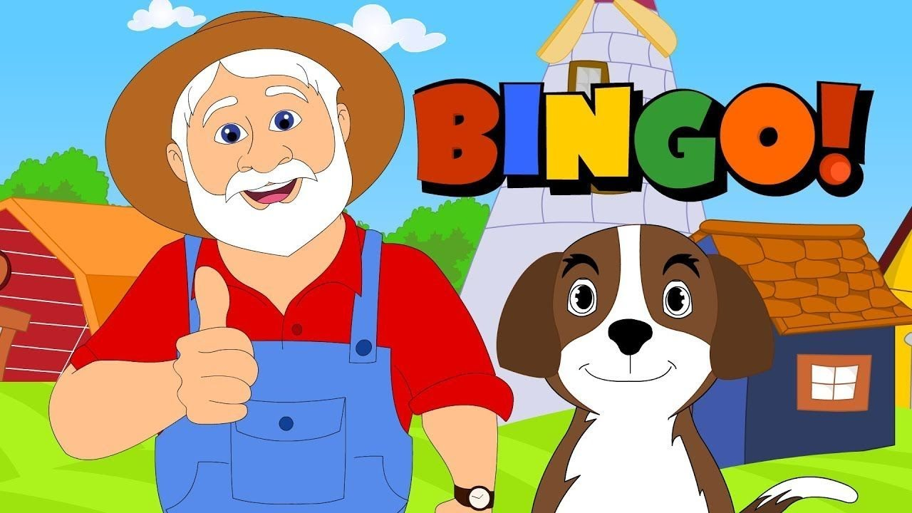 Bingo Dog Video