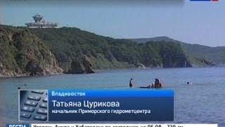 Вести-Хабаровск. Погода в Приморском крае