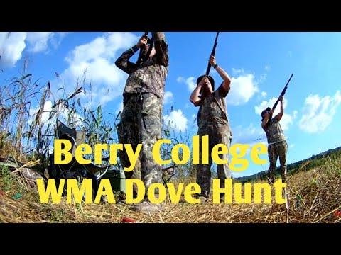 Berry College WMA Public Dove Hunt