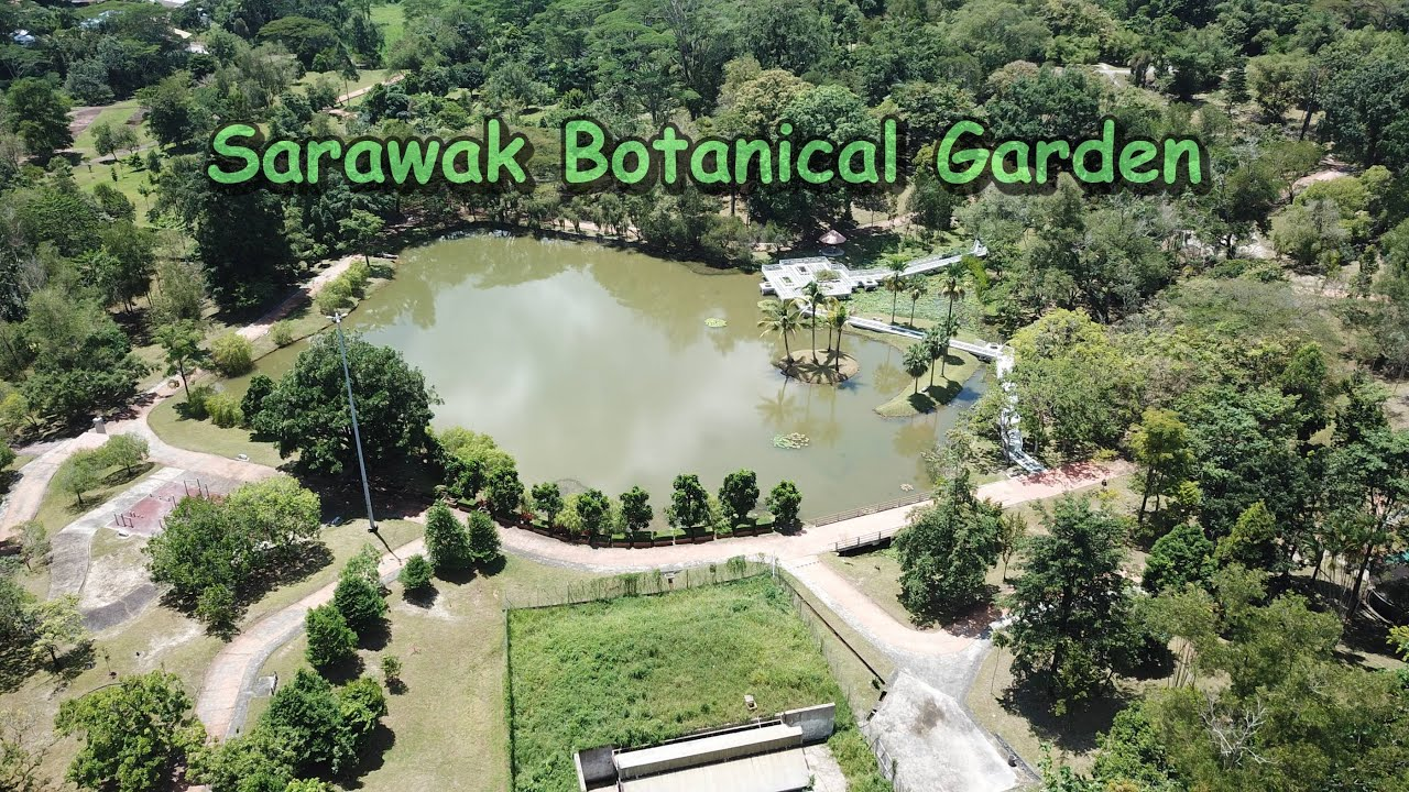 Sweat It Out Spots In Kuching Part 4: Sarawak Botanical Garden (Taman Botani) 砂拉越古晋植物园