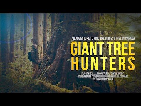 Giant Tree Hunters