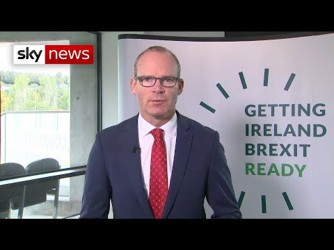 Irish Deputy PM underlines importance of Brexit deal