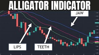 Learn About the Alligator Indicator - Trading Strategies Included