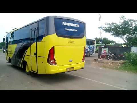 Bus secorpion holydays sch sorğusuna uyğun şekilleri pulsuz yükle ...