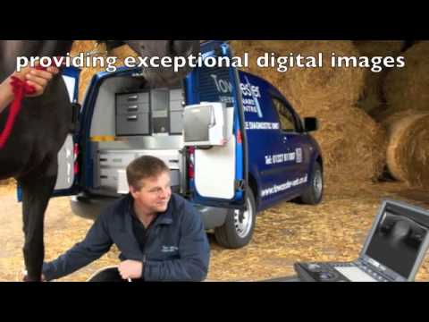 Equine Mobile Diagnostic Unit -fully equipped with X rays, endoscope, ultrasound, dental equipment