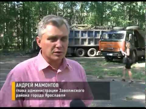 В Ярославле начали реконструировать парк у ДК Гамма