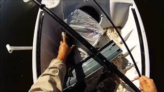 bass alligator gar in south texas kc kayak