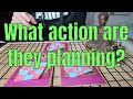 Free online tarot - PICK A CARD  ** What action are they planning? ** (Timeless)