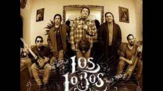 Los Lobos- We belong together