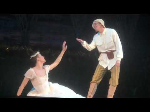Давид Мотта Соарес В балете Светлый ручей