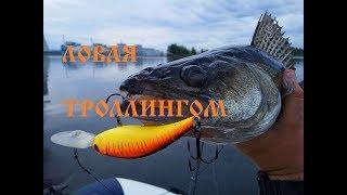 Рыбалка с лодки в Тверской области.