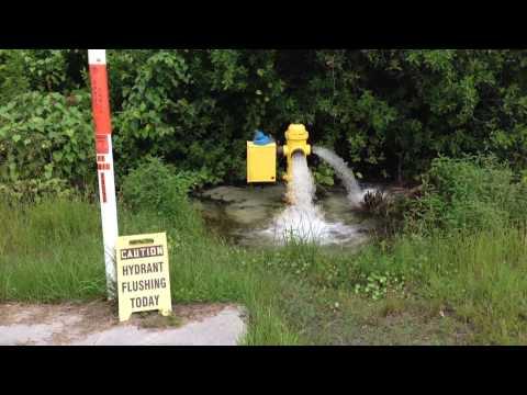 BONITA SPRINGS WATER ABUSE 2014
