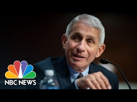 Anthony Fauci Says Coronavirus Vaccine Will Be Proven Effective Or Not By 2021 | NBC News NOW