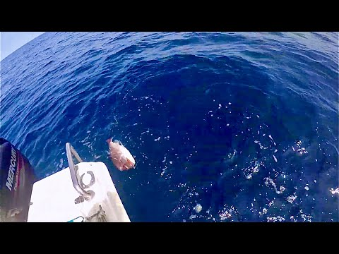 Dave Austin Fishing Home Video Episode 1