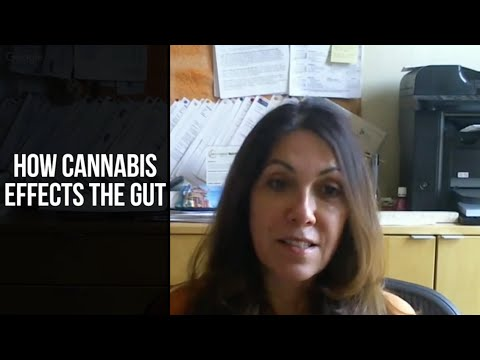 Cannabis & Gut Health: Medical Marijuana Science