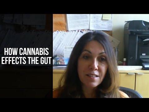 Cannabis & Gut Health: Medical Marijuana Science