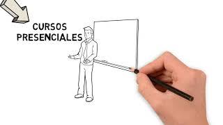 La nueva estructura de cursos del SEGUNDO CICLO