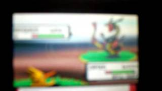Action Replay How To Catch Shiny Rayquaza