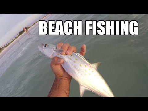 Beach Fishing, Catching Spanish Mackerel, Ladyfish, Jack Crevalle In The Florida Surf On Live Bait