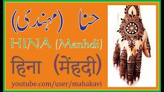 Menhdi (Hina) - History and Designs