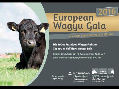 European WAGYU Gala 2016
