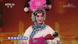 [梨园闯关我挂帅]京剧《四郎探母》选段 演唱:刘一祯 张建峰| CCTV戏曲