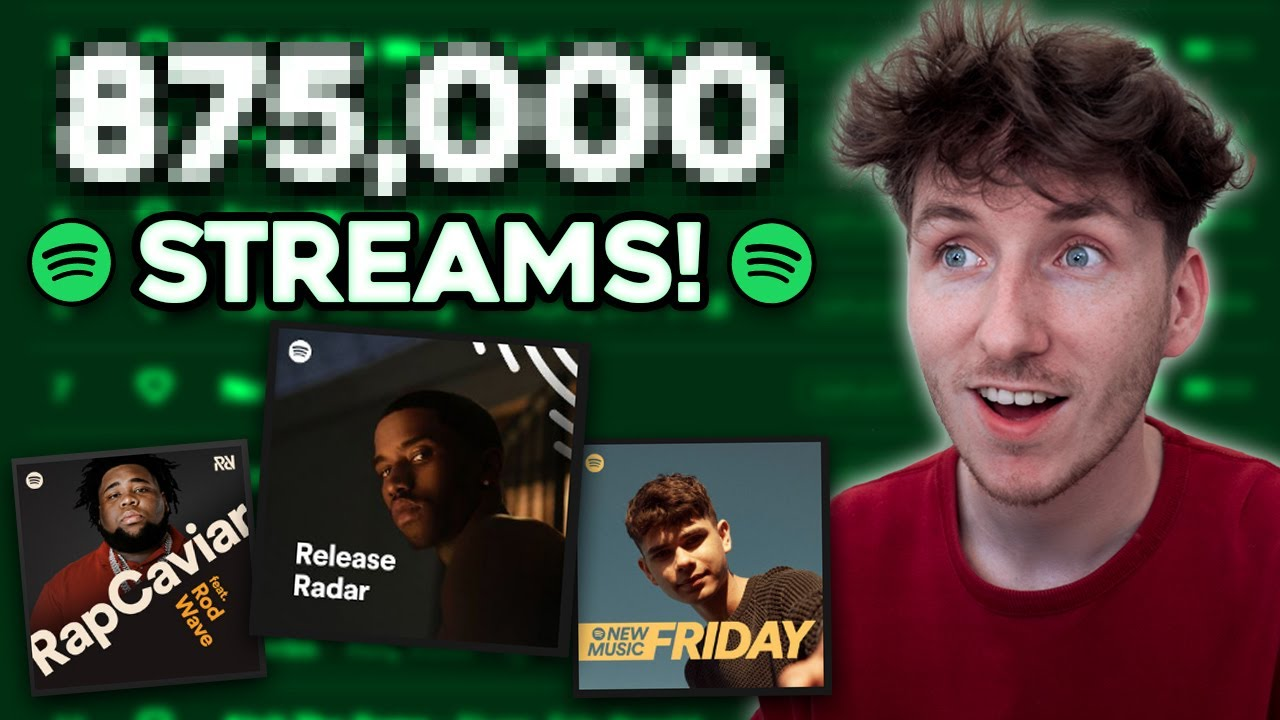 I Spent $500 on Spotify Playlist Promotion.. this is what happened