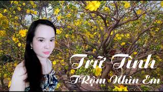 Nhac Tru Tinh Vip 77