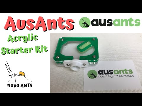 Aus Ants Acrylic Starter Kit - Unboxing & Review