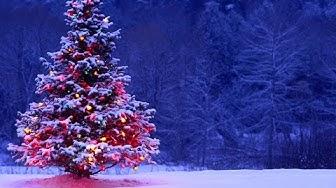 O2-Jkl Naisten joulukalenteri 2014 kahdeksas luukku: #10 Roosa Pelto-Arvo