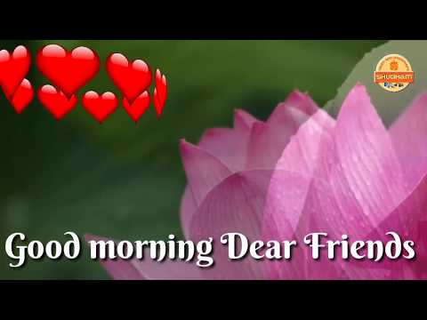 Beautifull Good Morning Video Songs For WhatsApp Download