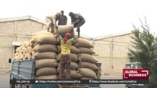 Ethiopia Plans to Rake in $1b From Coffee Exports - ኢትዮጵያ ከቡና ኤክስፕርት 1 ቢልዮን ዶላር ለማስገባት ታስባለች