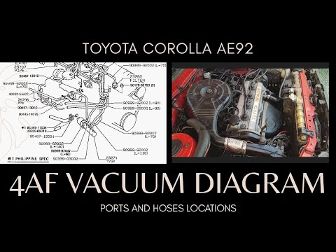 4AF 16V VACUUM DIAGRAM, PORTS AND HOSES LOCATIONS, PH SPEC - TOYOTA COROLLA AE92 SMALL BODY '89-'92