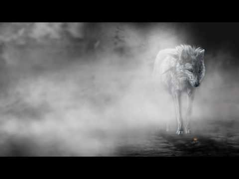 Ciszak - Madness(Original Mix)