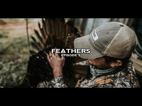 Turkey Hunting-  TN Hardwood Gobblers