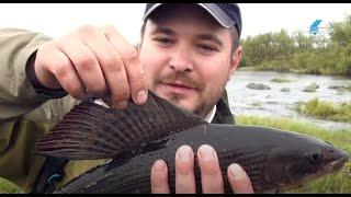 Рыбалка на Кольском полуострове. Мурманск 2014 г. 1 часть .