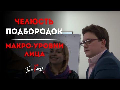Подбородок - челюсть и макроуровни | физиогномика трансфейсинг | Леонид Золин