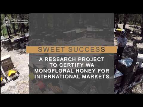 WA Monofloral honey for international markets | Dept of Primary Industries and Regional Development