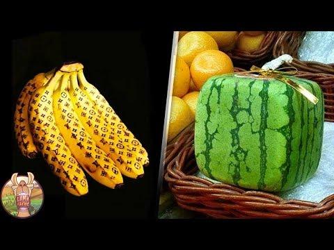 10 FRUITS QUE SEULS LES MILLIONNAIRES PEUVENT MANGER | Lama Faché