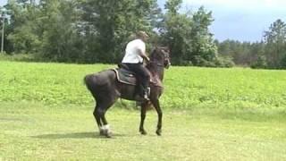 Memorial Day Ride 09