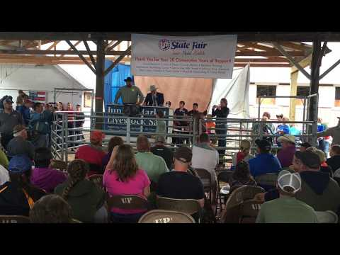 Boy is SHOCKED when his pig sells at the 4H auction for over $36,000