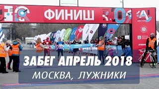 "Забег ""Апрель"" 2018, Москва, Лужники"