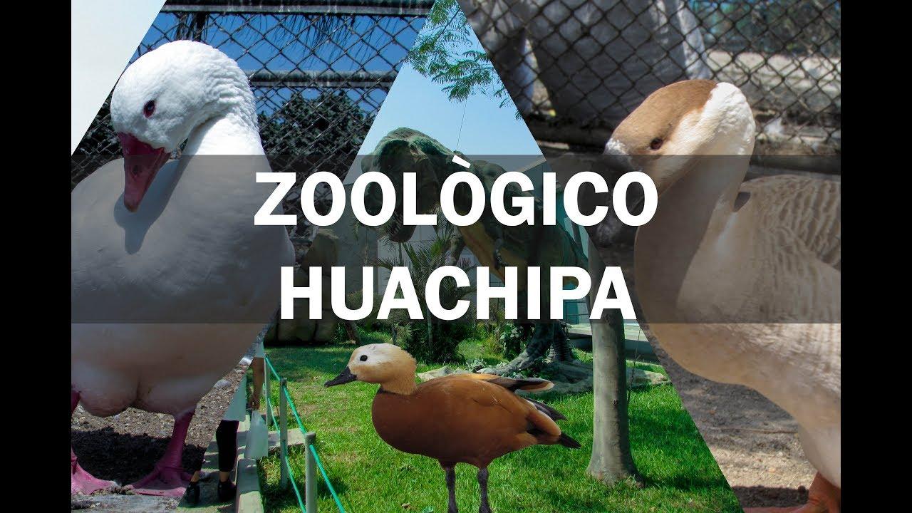 Parque Zoologico Huachipa Lima Destimap Destinations On Map La comida es casi la misma de los quioscos. parque zoologico huachipa lima