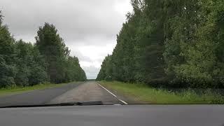 Авто дорога Кострома Буй покрытие участка дороги